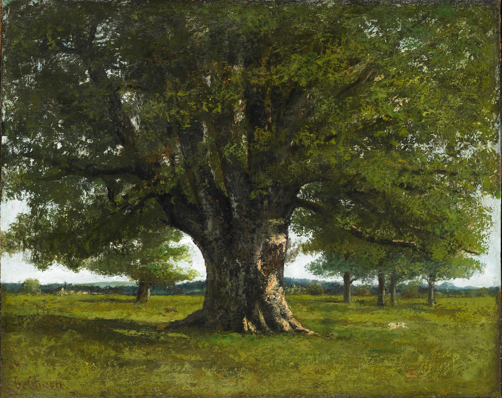 Chêne de Flagey de Courbet